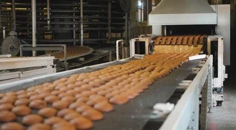 تولید کیک به روش صنعتی